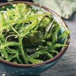 Cocina con Algas Marinas -Miércoles 25 de noviembre
